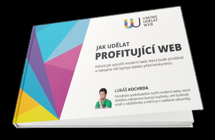 Ebook Jak udělat profitující web